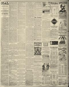Dunkirk Evening Observer, January 21, 1890, Page 3
