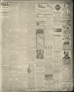 Dunkirk Evening Observer, February 01, 1890, Page 3