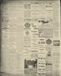 Dunkirk Evening Observer, February 03, 1890, Page 2