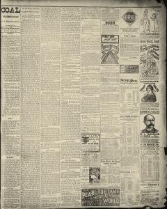 Dunkirk Evening Observer, February 03, 1890, Page 3
