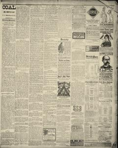 Dunkirk Evening Observer, February 04, 1890, Page 3