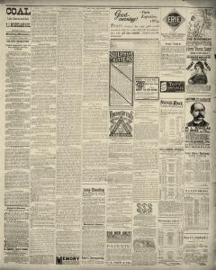 Dunkirk Evening Observer, February 08, 1890, Page 3