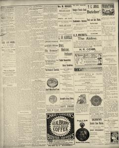 Dunkirk Evening Observer, March 01, 1890, Page 2