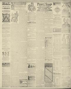 Dunkirk Evening Observer, March 01, 1890, Page 3