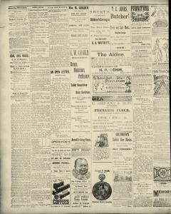 Dunkirk Evening Observer, March 19, 1890, Page 2