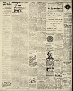 Dunkirk Evening Observer, March 19, 1890, Page 3