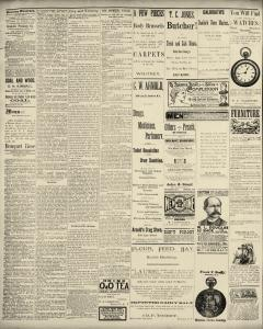 Dunkirk Evening Observer, May 02, 1890, Page 2