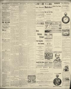 Dunkirk Evening Observer, May 06, 1890, Page 2