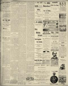 Dunkirk Evening Observer, May 19, 1890, Page 2