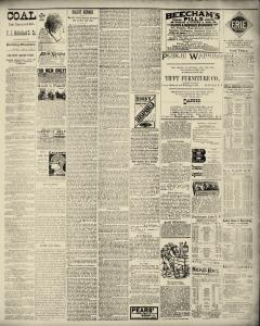 Dunkirk Evening Observer, May 20, 1890, Page 3