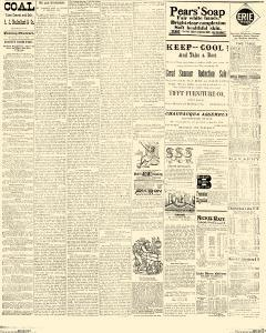 Dunkirk Evening Observer, July 07, 1890, Page 3