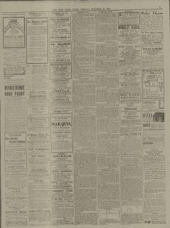 New York Times, October 27, 1904, Page 31
