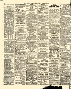 New York World, January 02, 1875, Page 7