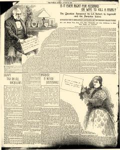 New York World, August 29, 1897, Page 22