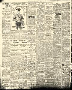 New York World, August 29, 1900, Page 3