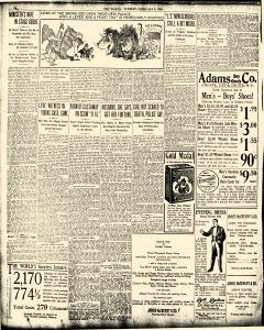 New York World, February 03, 1903, Page 14