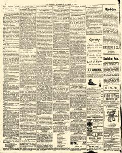 World, October 14, 1885, Page 8