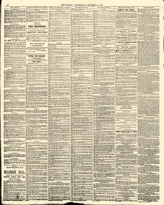 World, October 14, 1885, Page 10