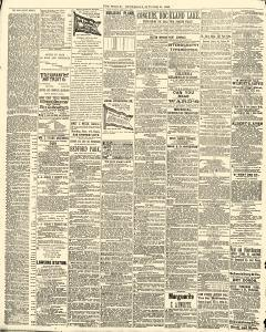 World, October 22, 1890, Page 10