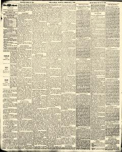 World, February 05, 1893, Page 4