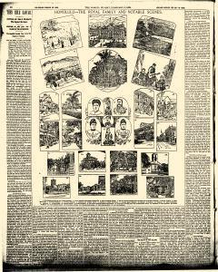 World, February 05, 1893, Page 10
