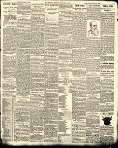 World, February 05, 1893, Page 3