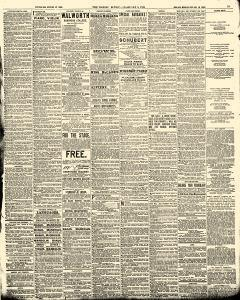 World, February 05, 1893, Page 15
