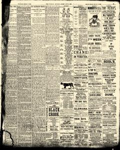 World, February 05, 1893, Page 23