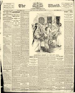 World, December 24, 1893, Page 5
