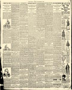 World, December 24, 1893, Page 13