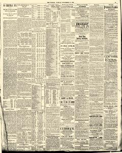 World, December 24, 1893, Page 15