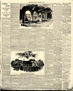 World, December 24, 1893, Page 19