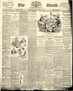 World, February 08, 1894, Page 1