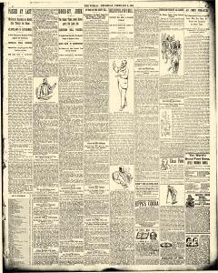 World, February 08, 1894, Page 7