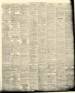 World, February 08, 1894, Page 11