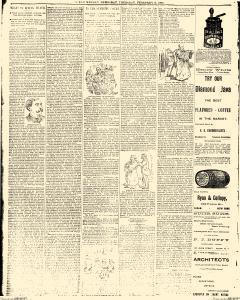 Olean Democrat, February 06, 1890, Page 13