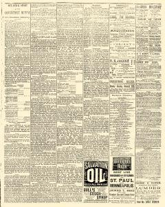 Syracuse Courier, February 09, 1893, Page 3