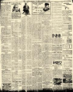 Syracuse Daily Standard, September 18, 1895, Page 8