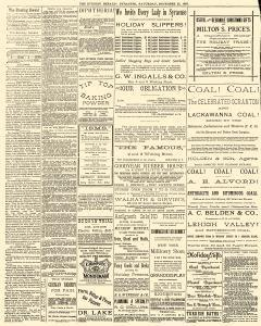 Syracuse Evening Herald, December 22, 1883, Page 2