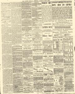 Syracuse Evening Herald, June 03, 1884, Page 2