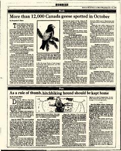 Syracuse Herald American The Post Standard, November 10, 1985, Page 328