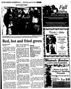 Syracuse Post Standard, August 24, 2005, Page 223