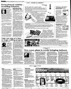 Syracuse Post Standard, October 08, 2005, Page 41