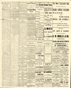 Syracuse Standard, August 03, 1881, Page 2