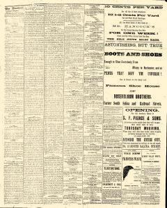 Syracuse Standard, August 03, 1881, Page 4