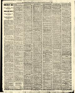 Syracuse Sunday Herald, March 22, 1896, Page 11