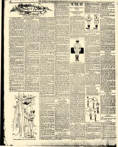Syracuse Sunday Herald, March 22, 1896, Page 21
