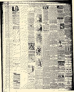 Wellsville Allegany County Reporter, November 25, 1886, Page 4