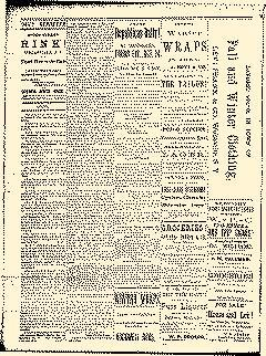 Wellsville Daily Reporter, October 23, 1884, Page 2