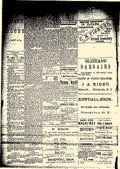 Wellsville Daily Reporter, February 11, 1889, Page 4